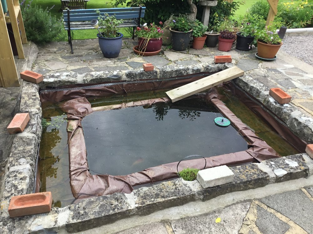 Before… - A poor attempt at creating a pond
