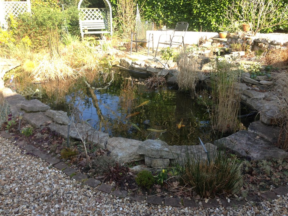 Before… - Grey and dull pond