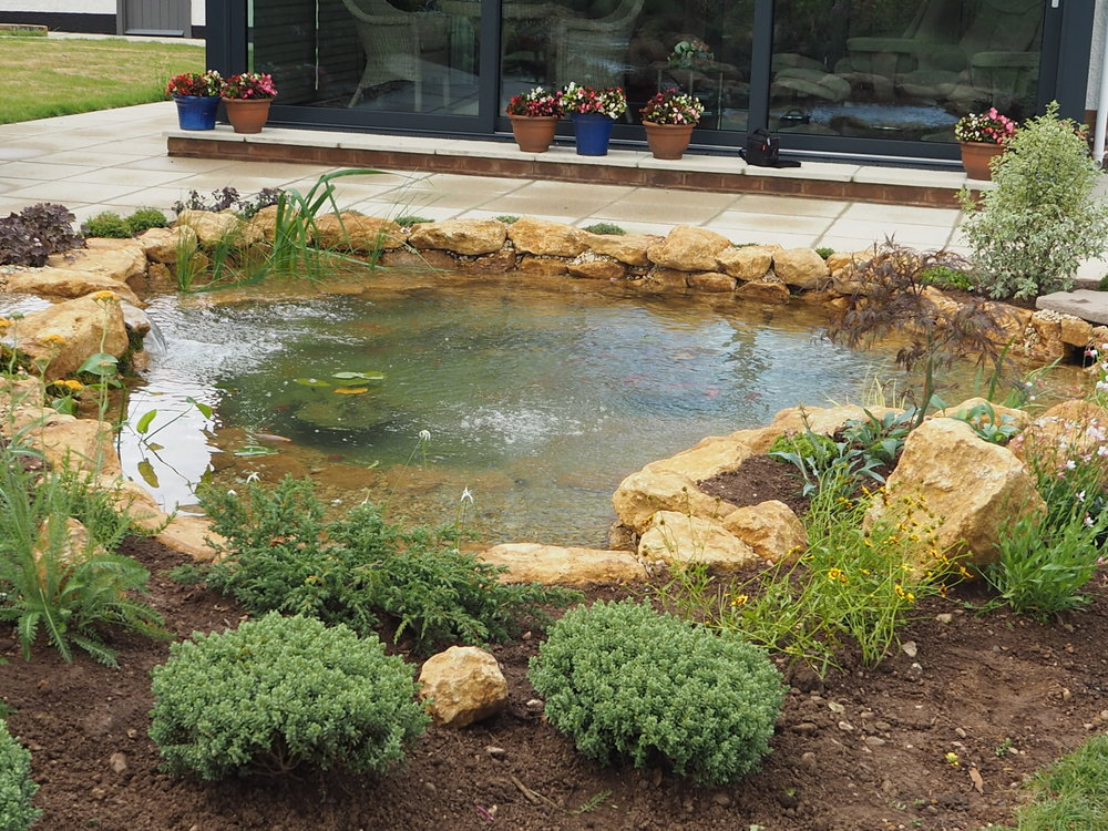 After… - Natural style pond closer for maximum enjoy and interaction