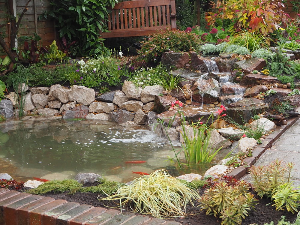 After… - Ecosystem pond and cascading waterfall
