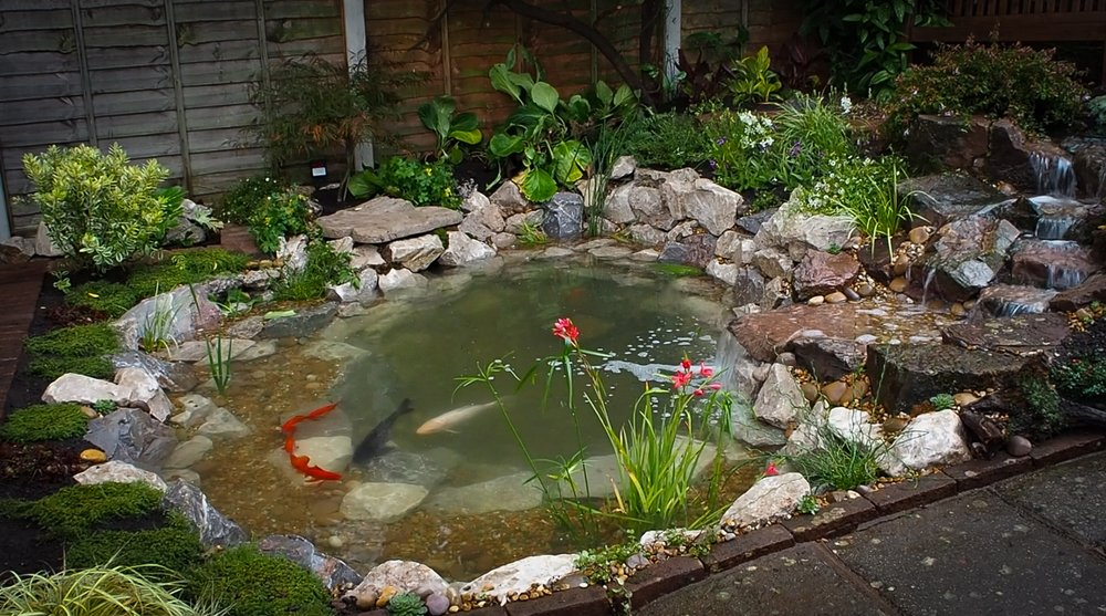 After… - Fully functioning aquatic ecosystem pond with a one-of-a-kind cascade & waterfall
