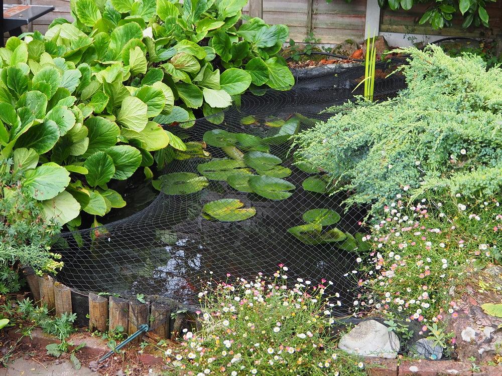 Before… - Flaking fibreglass pond