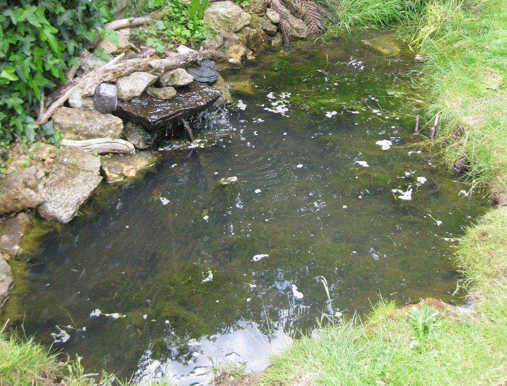 Before… - A general builders attempt at a natural wildlife pond