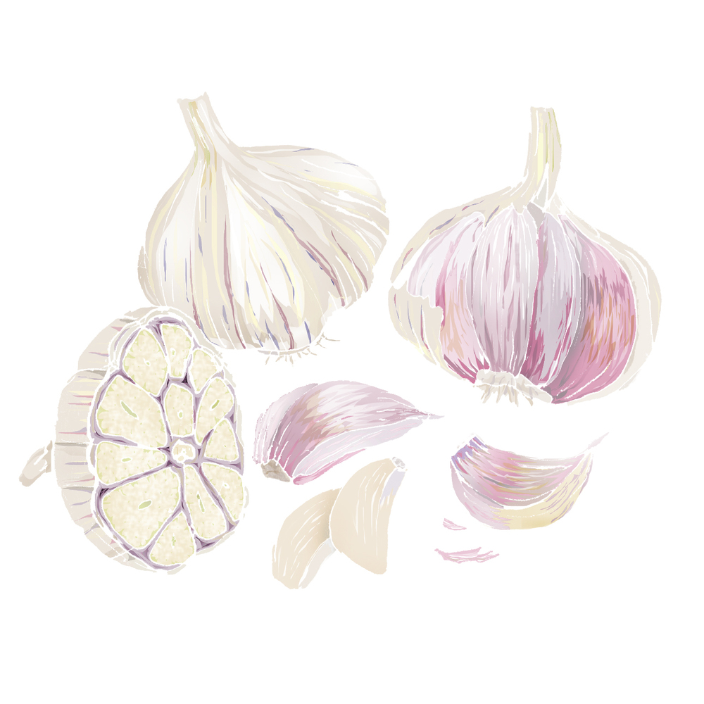 G - Garlic