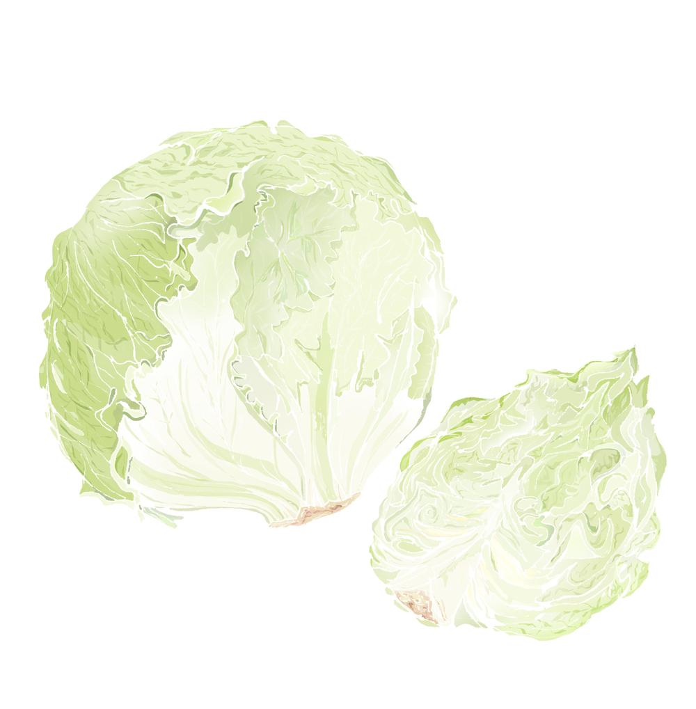 I - Iceberg lettuce