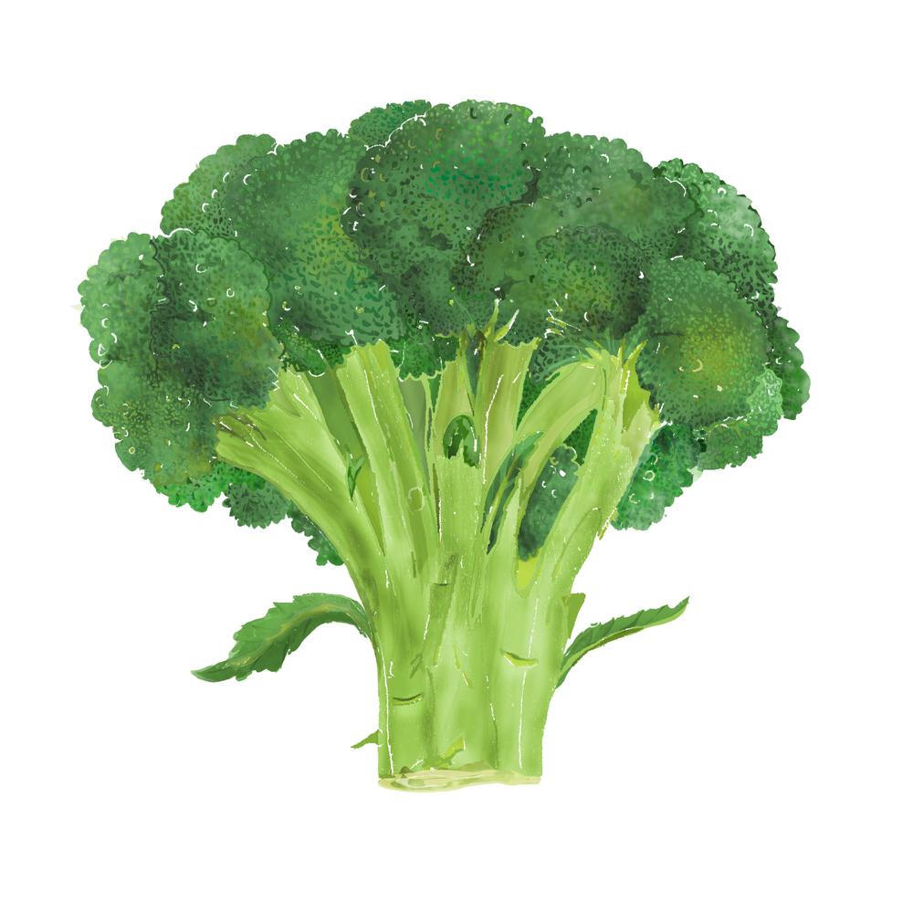 B - Broccoli