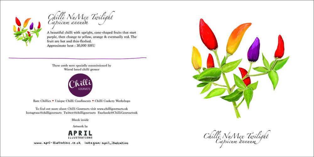 Chilli Cards-01.jpg
