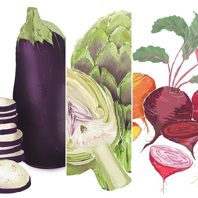 What's in season this May?... some of my favourite vegetables! Aubergine, artichoke & beetroot! 🍽🌱 All of my vegetable prints are available to buy as A4 prints from my Etsy shop IllustrationsByApril 🙂