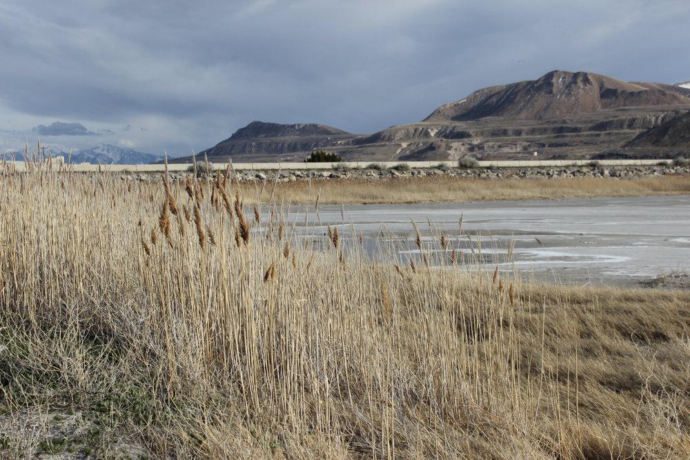@Lake Mead, AZ