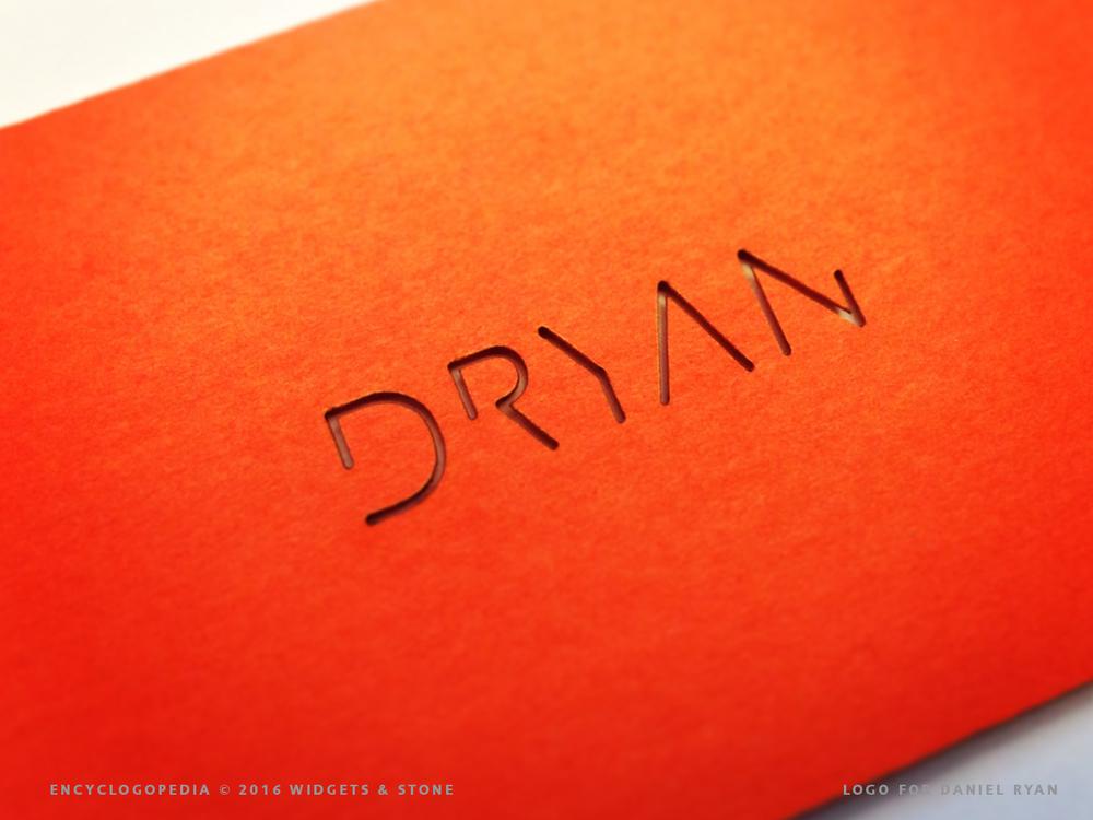 Dryan logo application design
