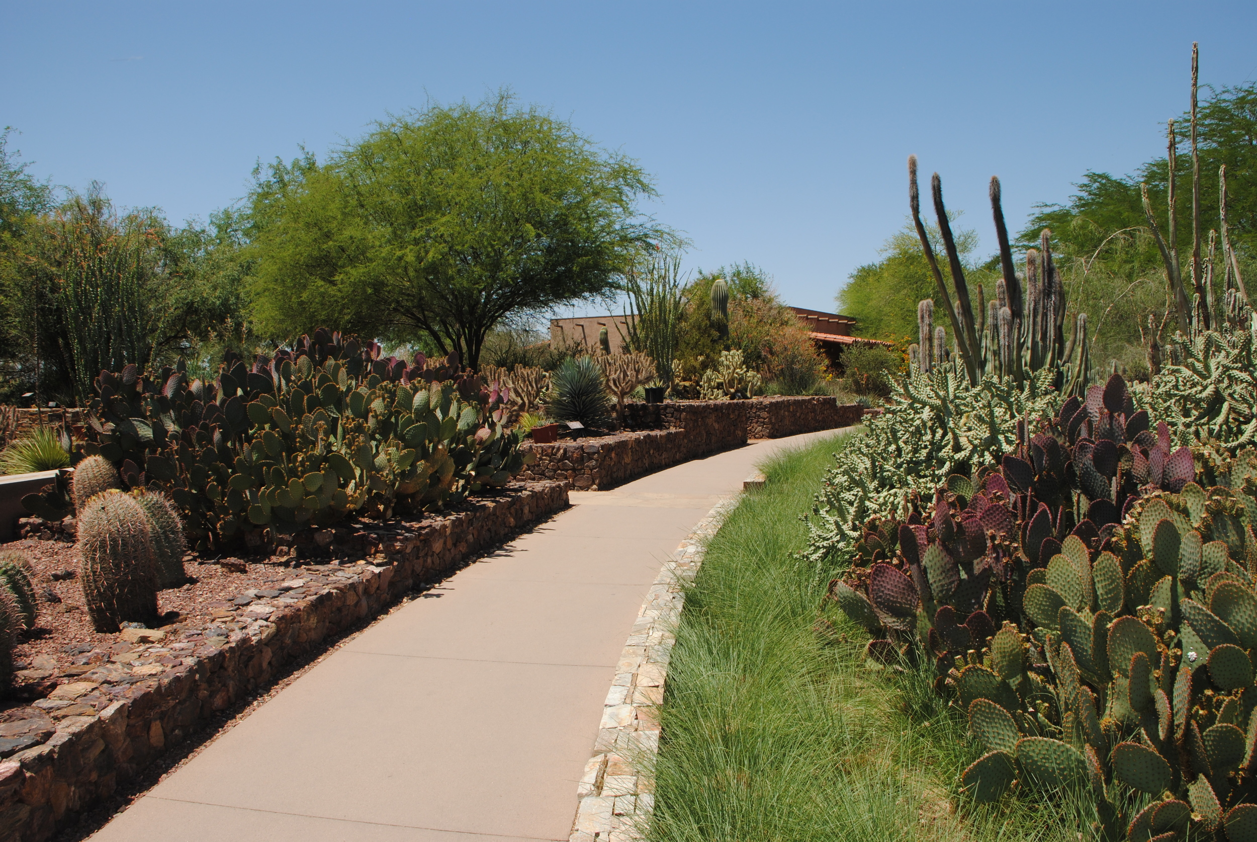 Incredible collections are combined with beautiful gardens for the best of both worlds.