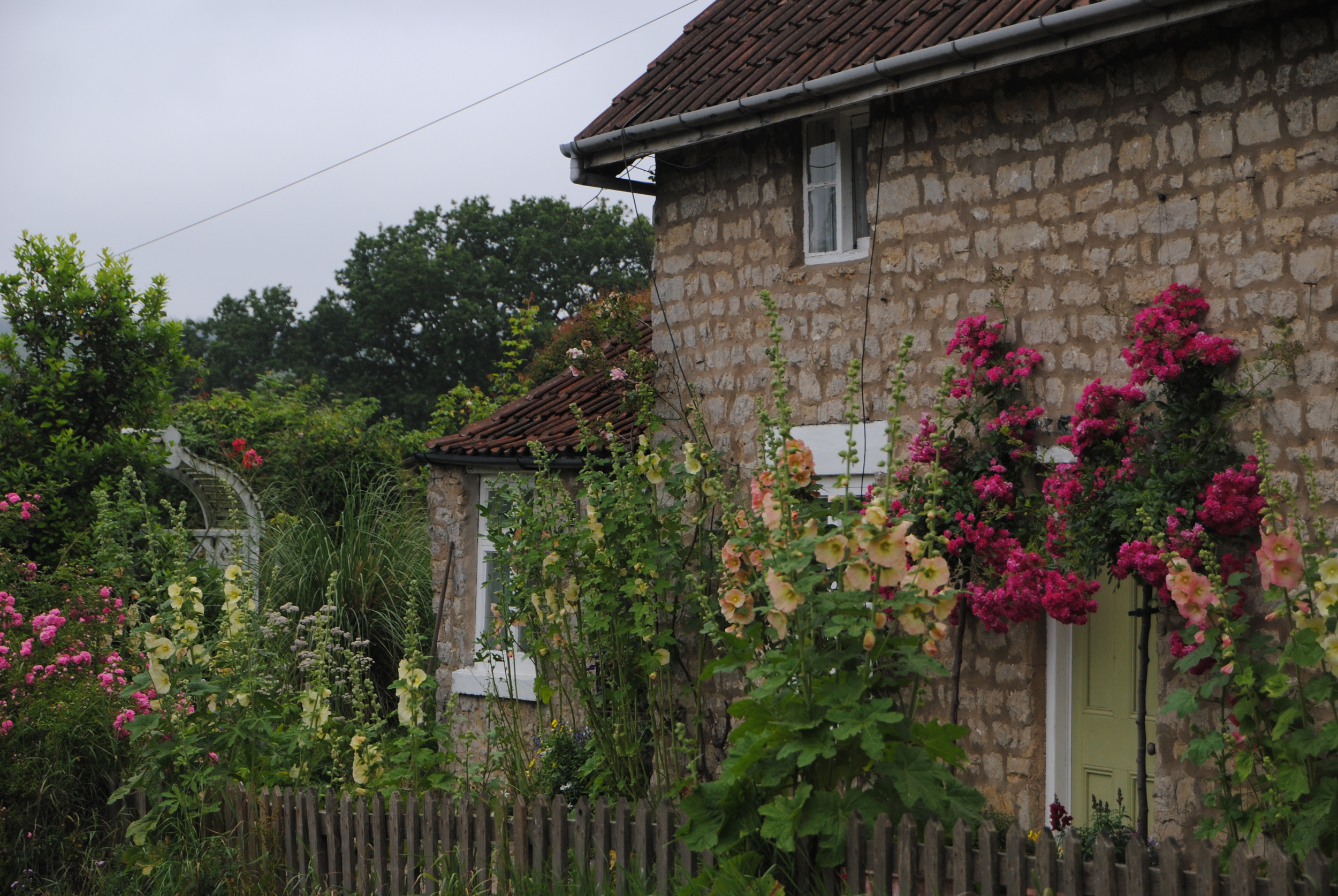 Old houses and walls are surrounded by flowers everywhere I drove.