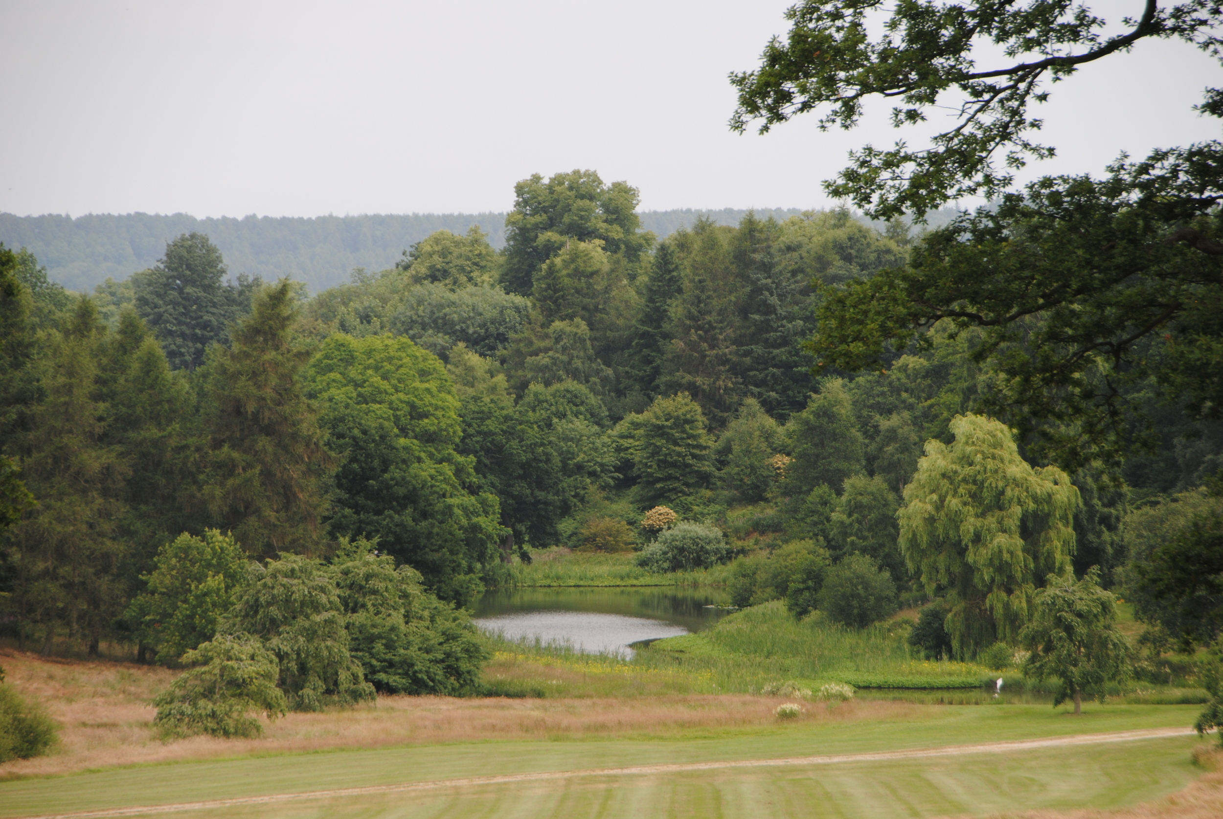 One of many spectacular views at the Yorkshire Arboretum.