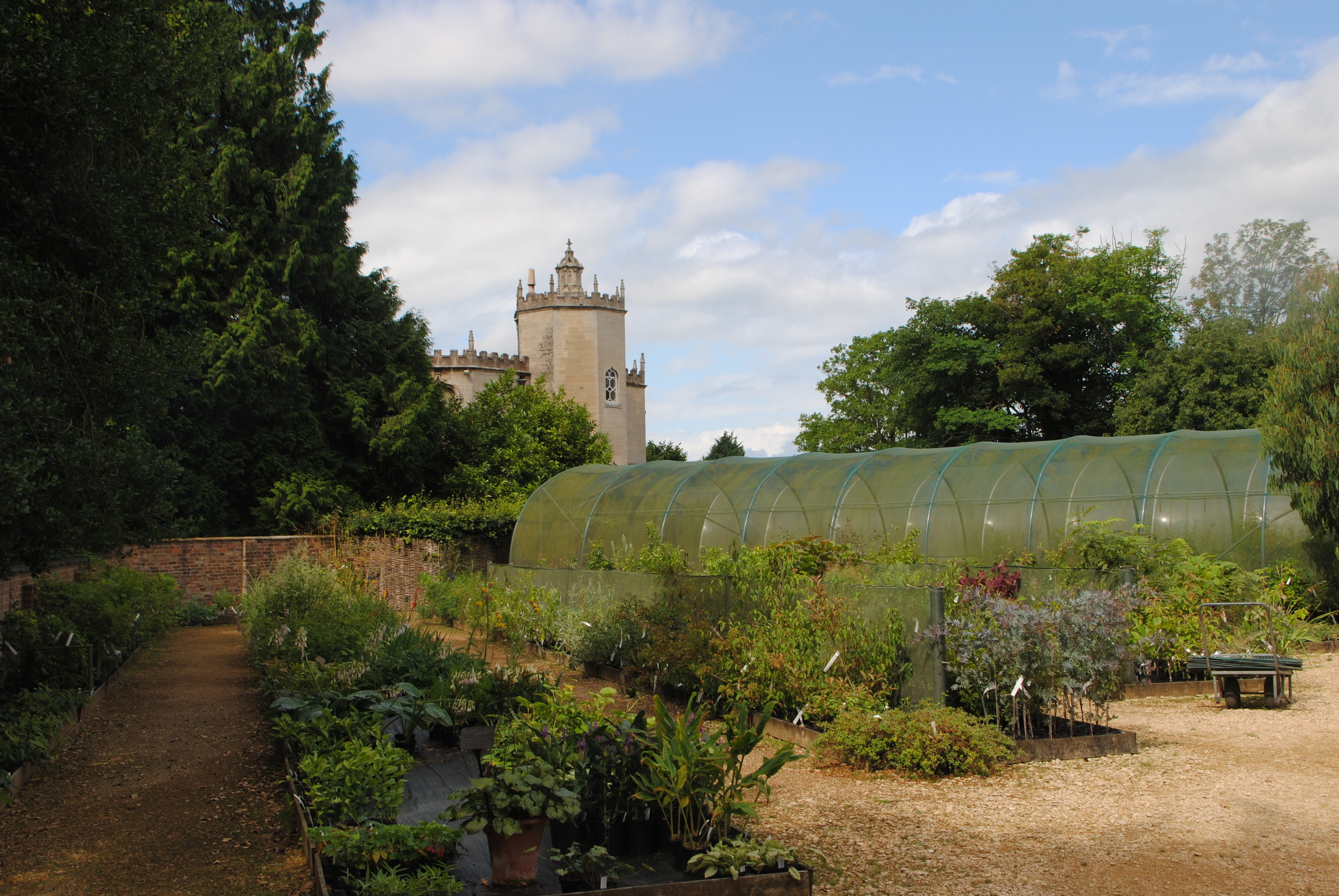 Few nurseries can boast the borrowed scenery of Nick Macer's Pan-Global Plants at Frampton Court.