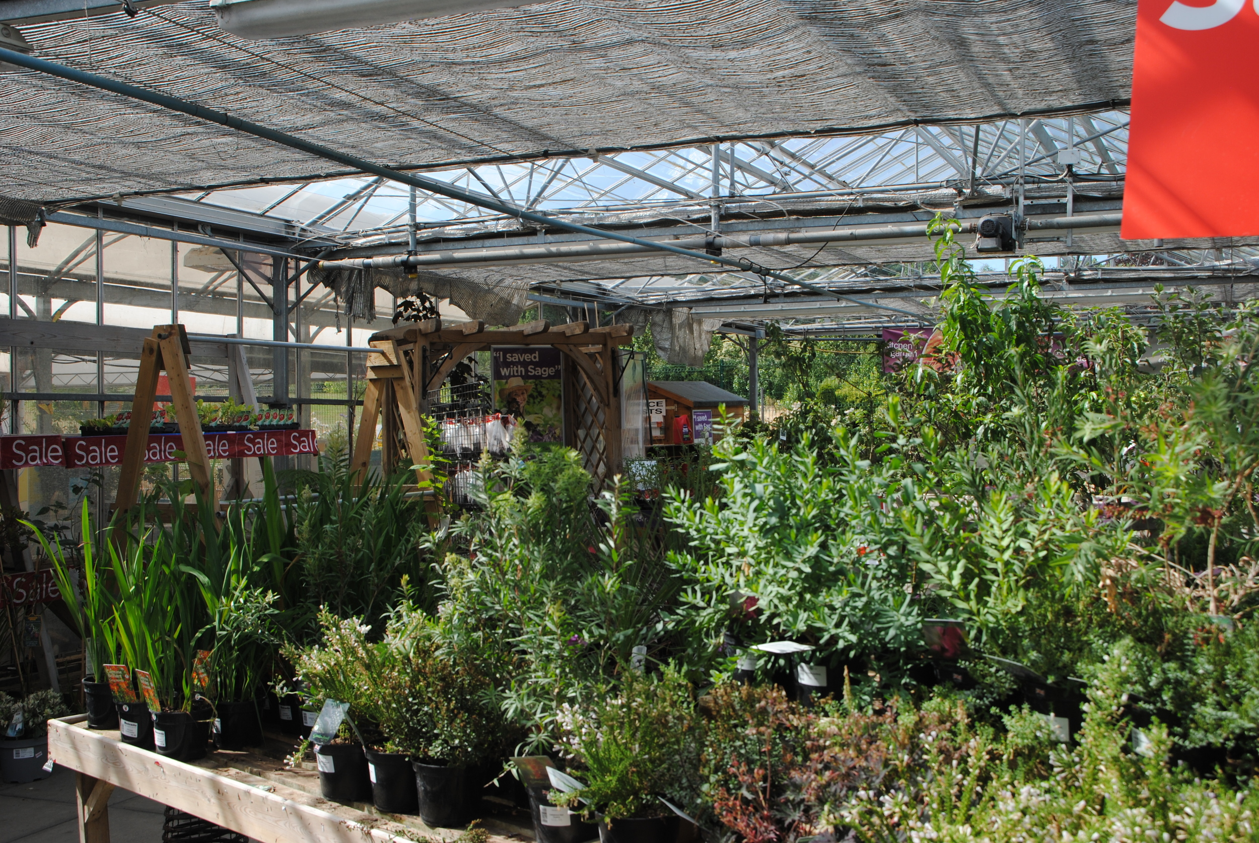 Notcutt's Nursery has a great selection of plants and garden accessories.