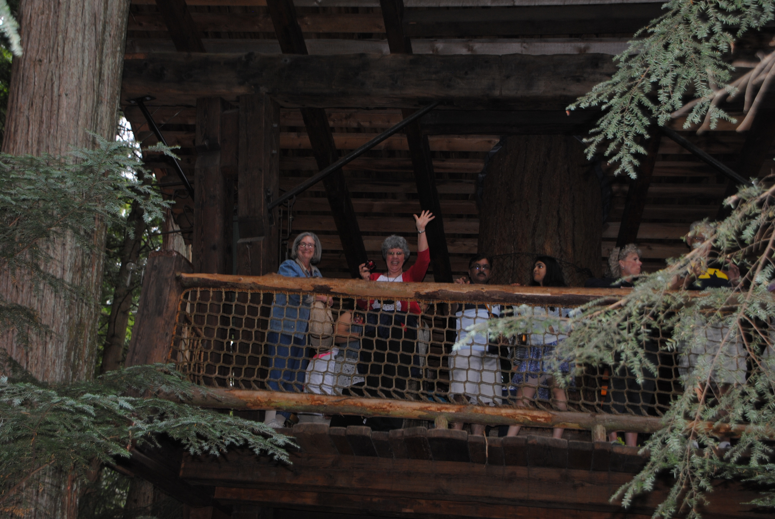 Part of the group entering the tree canopy walk.