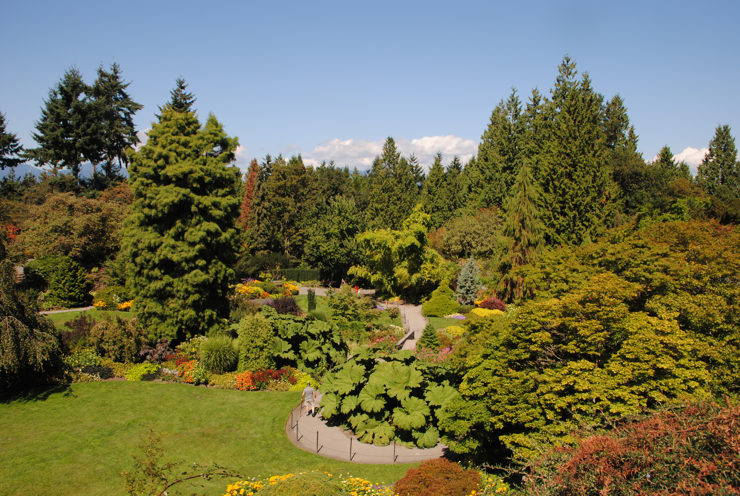 The incredible quarry garden at Queen Elizabeth Park viewed from above.
