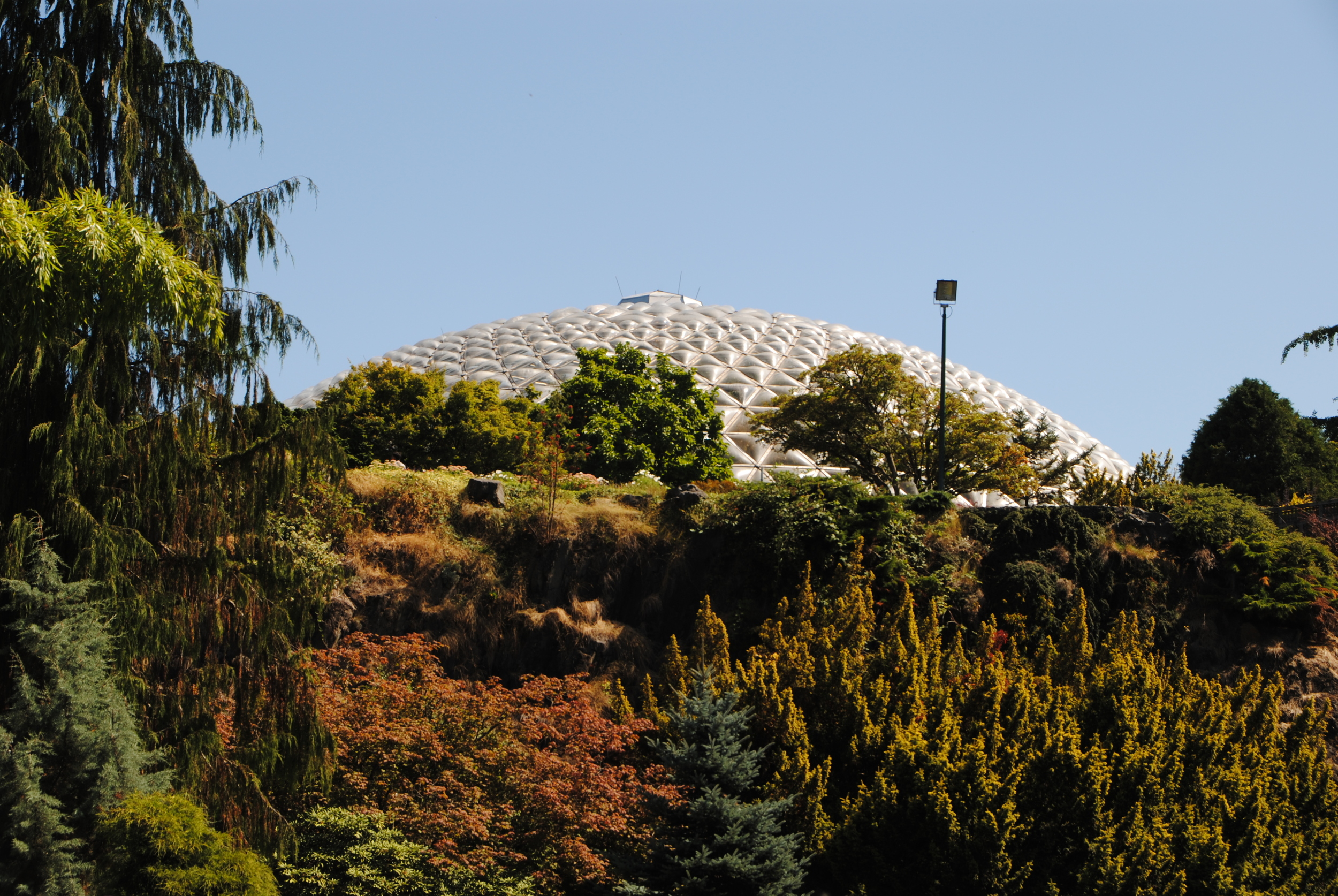 The dome of the Bloedel Conservatory.