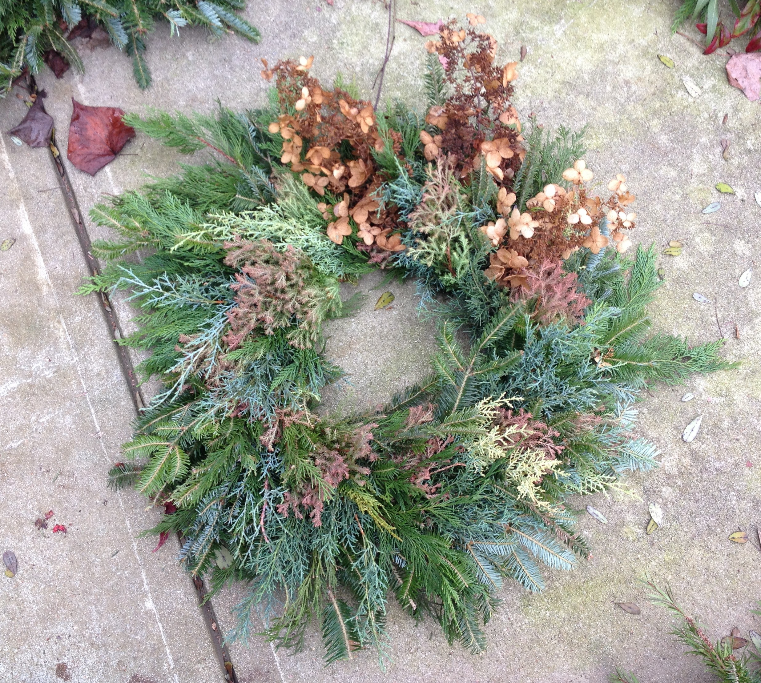 This wreath features dried hydrangea and a variety of conifers, others have bright berries, willow twigs, and pine cones.
