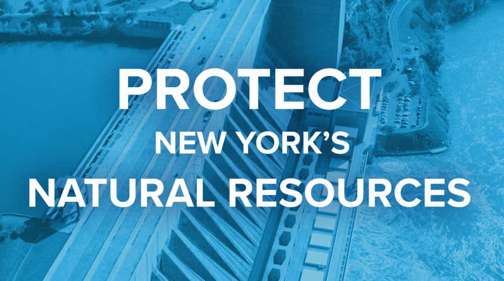 Protect New York's Natural Resources