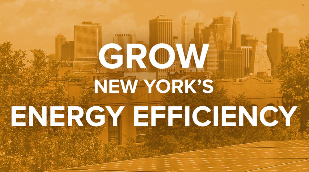 Grow New York's Energy Efficiency
