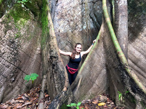 The roots of the tallest tree in the Amazon (and one of the tallest in the world), the Ceiba at Reserva Marasha, Peru