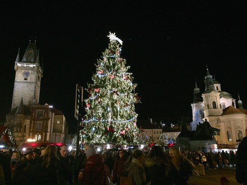 Christmas tree lights up Old Town Square
