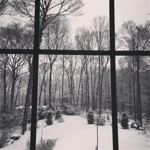 "First week of ""imprisonment"": a winter wonderland from the inside the glass"