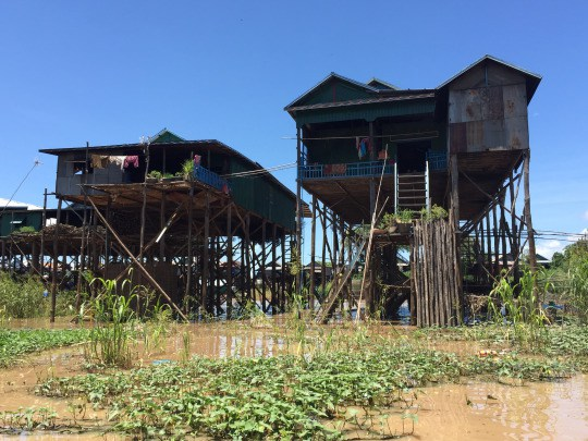 View of the typical floating house in the village. During wet season, the water gets as high as the bottom of the houses!