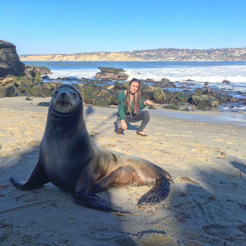 Well I did hear San Diego was full of hot seals ;)