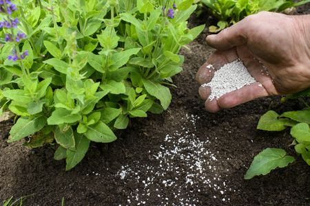 Agrochemicals and Seeds