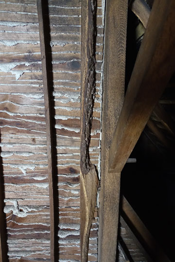Bark still clings to the attic sheathing behind a plaster wall.