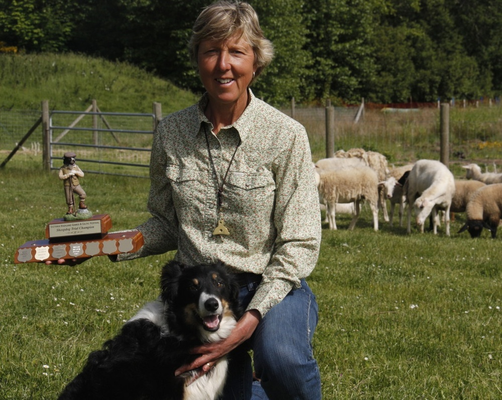 "Julie and her dog Bobbie took home 1st place in the Victoria Highland Games sheep dog trial.   ""My six weeks class with Julie at the West Coast Canine Academy was one of the best investments I have ever made. I've always wanted to be able to train dogs, and now I'm confident I can not only do that, but train their owners as well. Julie and her assistant Dorothy taught me so much, answered all of my questions, and erased my doubts. I was really sad when it was over because I enjoyed the course so much. I feel a lot more confidence now as I start my own business as a dog trainer. I highly recommend the West Coast Canine Academy!"" — Clio Doris Flores   ""Julie is an excellent instructor. She knows her subject inside and out. She gets results with the dogs she works with and is able to impact (her) knowledge clearly to the students. I thoroughly enjoyed it!"" — Joanne Gwynne   ""Before I started taking classes from West Coast Canine Academy, I did not even really understand the sport of agility. Now I understand that it is a team sport – that my dog Levi and I get to work together to move through a course with speed, efficiency and fun! The classes are set up to give the handler experience on a wide range of equipment including weaves, tunnels, A-frames and jumps. The instructors give great feedback, both encouraging words and constructive criticism. The transformation I have seen in Levi has been unbelievable, he is way more confident and the sessions have really helped to strengthen the bond between us."" — Chantel Miller"