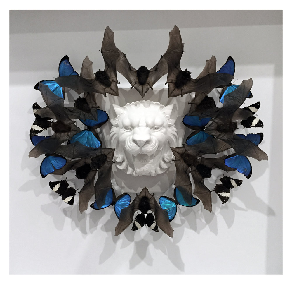 "Joseph Grazi, ""Scar"" 2016. Taxidermy bats, dried butterflies, and stone sculpture on wood mounted in plexiglass. 34"" x 34"" x 8""."