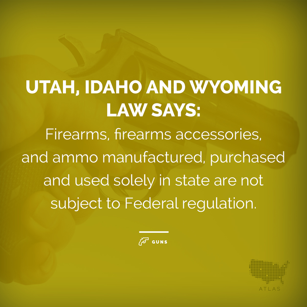 Other states have enacted similar laws as well such as Alaska, Arizona, Kansas, South Dakota, Tennessee and more