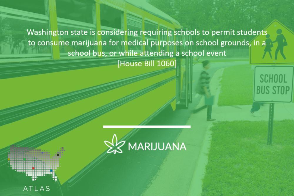 Washington Medical Marijuana in Schools.png