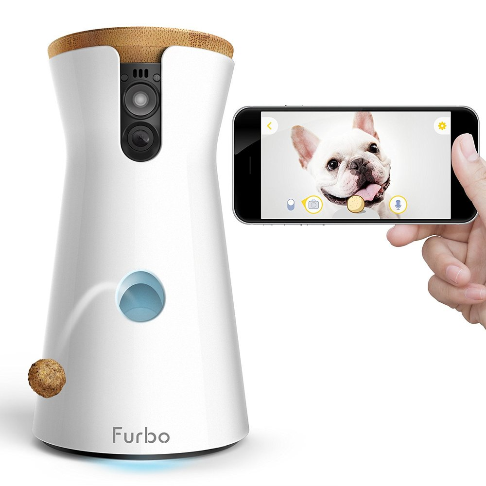 An interactive link to your pooch! What a fun way to stay connected with your pet while you're away. Watch the video... this looks adorable!