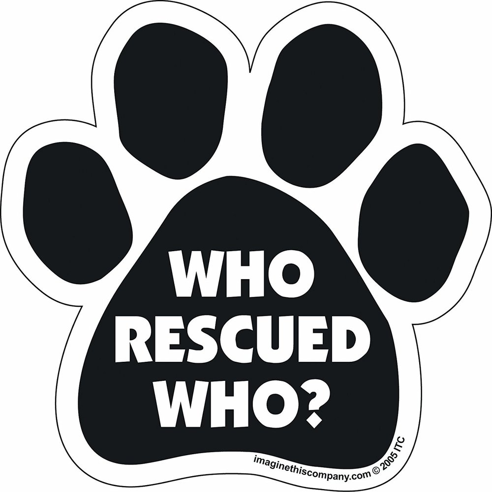 This car magnet is for a cause worth supporting. Rescue dogs give far more than they receive!