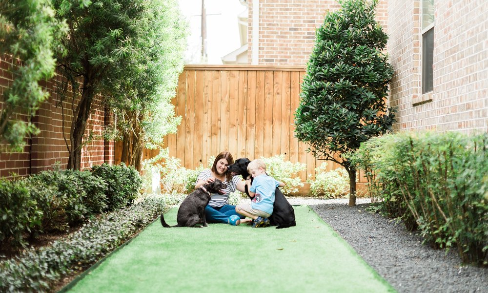 Small Backyard Ideas for family living in the city.