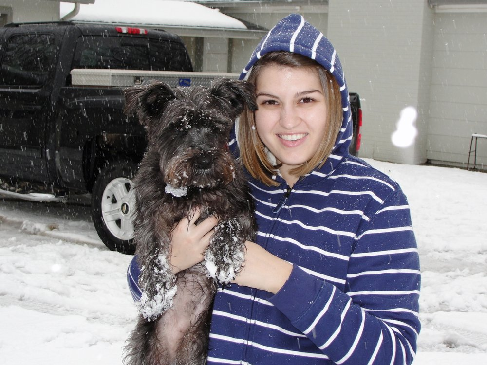 Snowflakes, Schnauzers and memories...