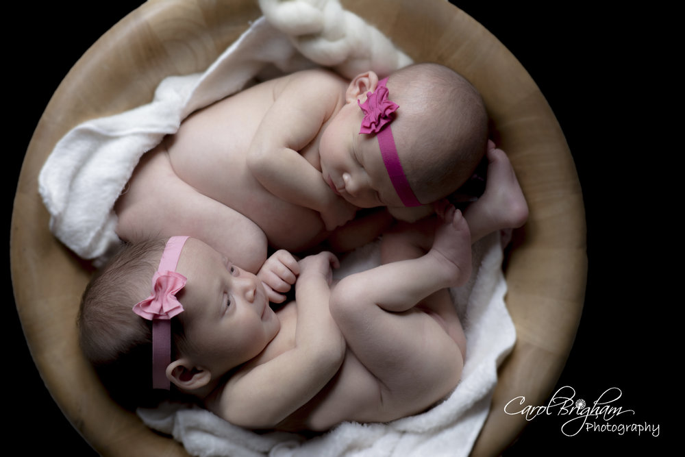 Carol-Brigham-Photography-babies 46 and 45-2-.jpg
