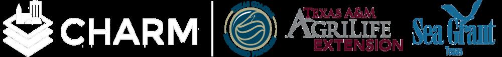logo banner top.png