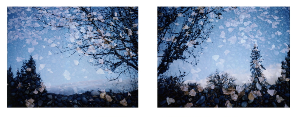 Christmas Diptych, 2011