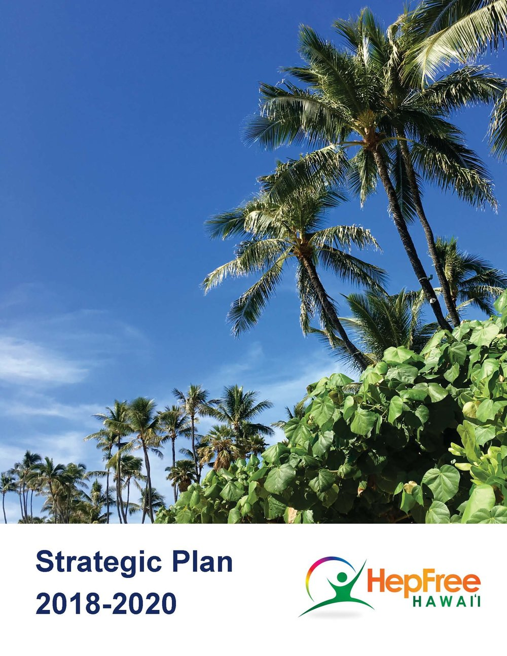 HFH Strategic  Plan 2018-2020 Cover.jpg