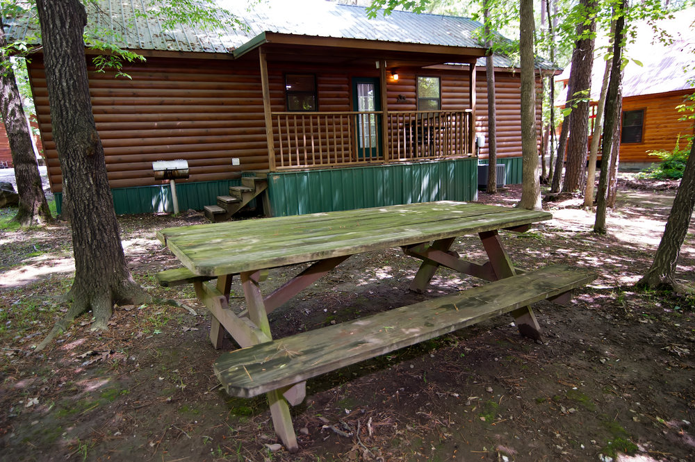 BT Back area picnic table.jpg
