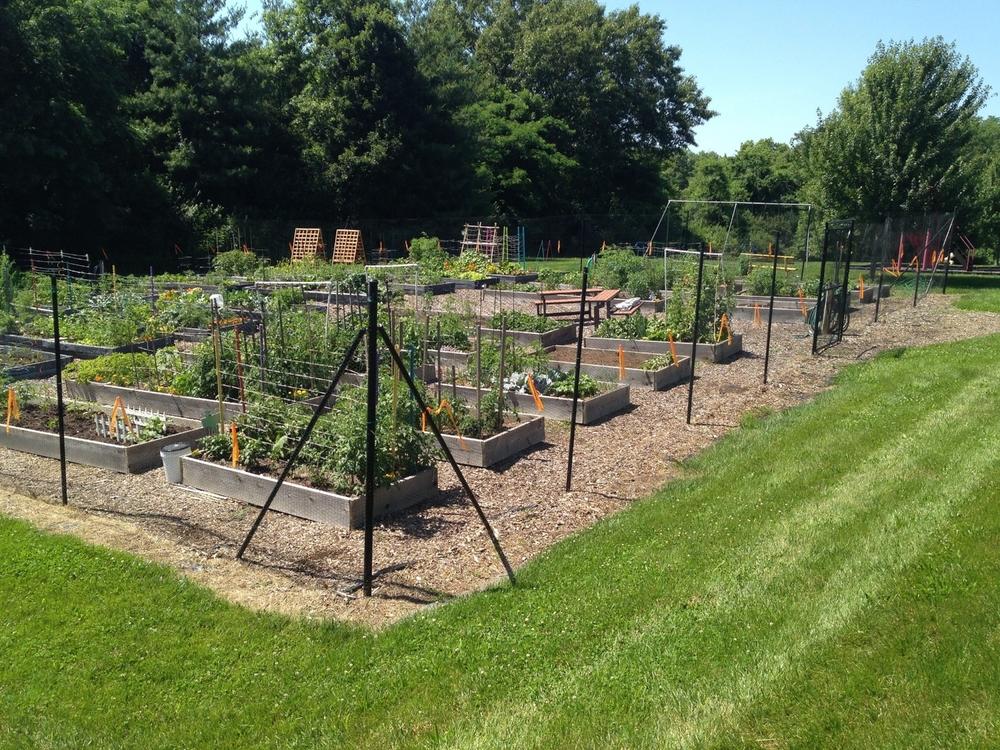 community-garden2.jpg