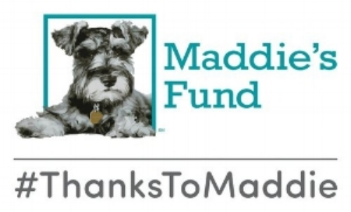 - In 2017, ARK received a $5000 Foster Care Grant from the Maddie's Fund organization of Pleasanton, CA to initiate our pet foster program. #ThanksToMaddie!