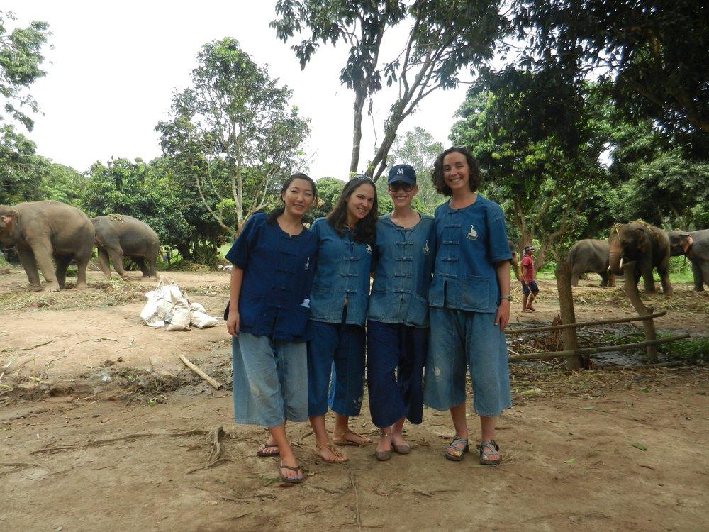 Baan Chang Elephant Park Chiang Mai Thailand