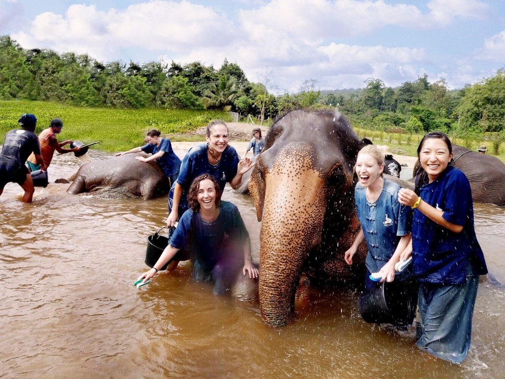 Baan Chang Elephant Park in Chiang Mai is a great spot for group retreats.
