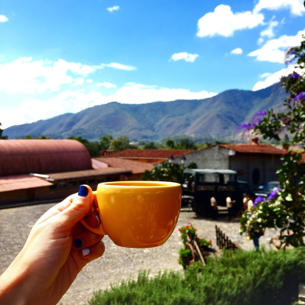 Tasting coffee at R. Dalton Coffee Plantation in Antigua.